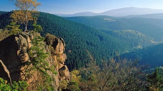 Singlereisen im Harz - blogger.com